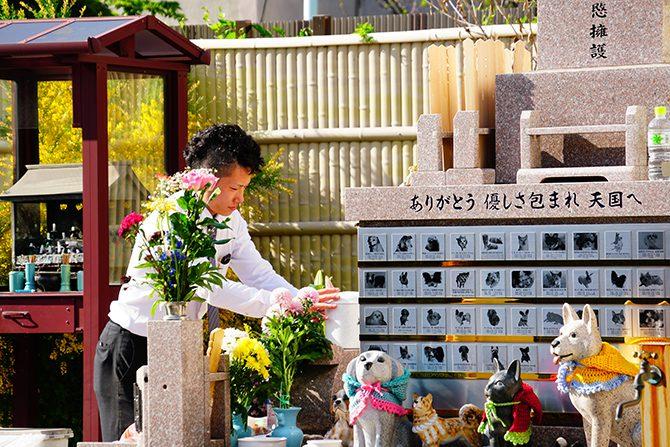 春季動物供養大祭(春のペット供養祭)6