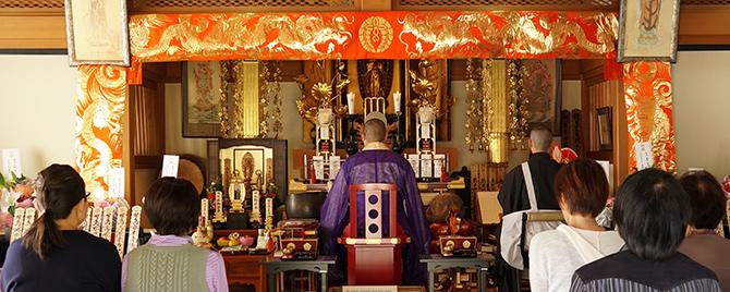平成31年春季動物供養大祭(ペット供養祭)のご案内