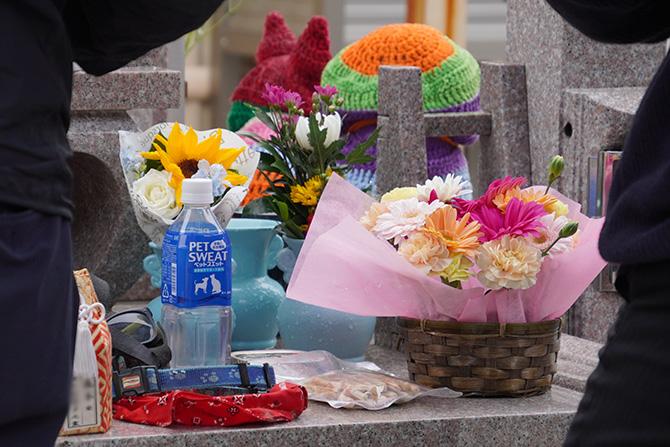 ペット供養祭20