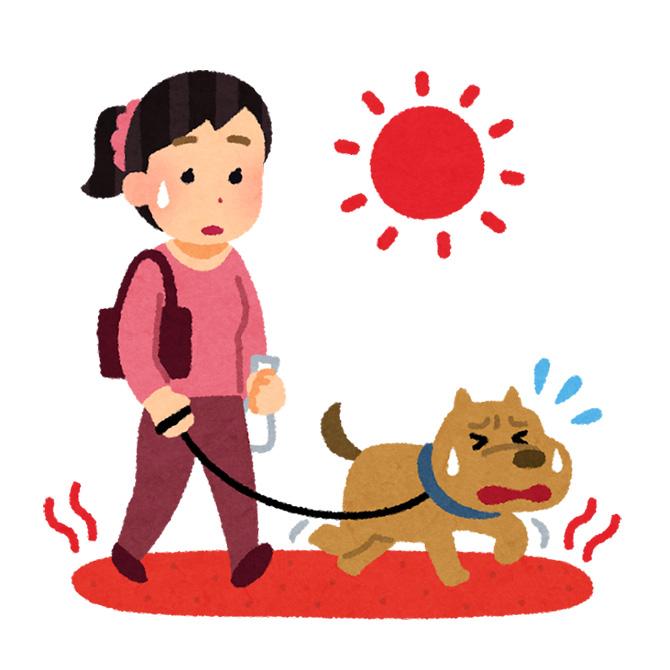 この季節はペットの熱中症にご注意を。
